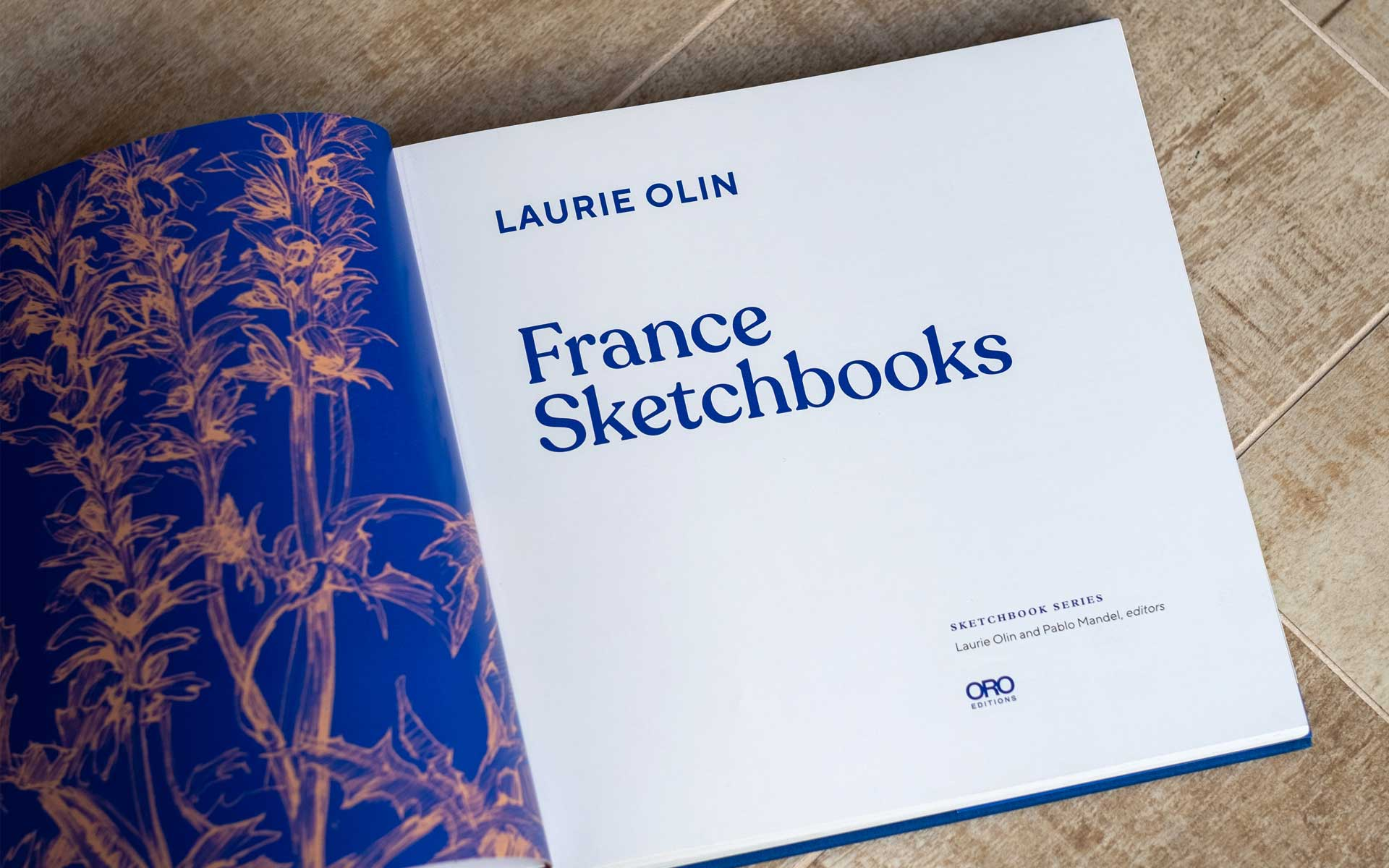 sketchbooks-laurie-olin-3